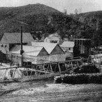 Mount Ophir Mine stamp mill