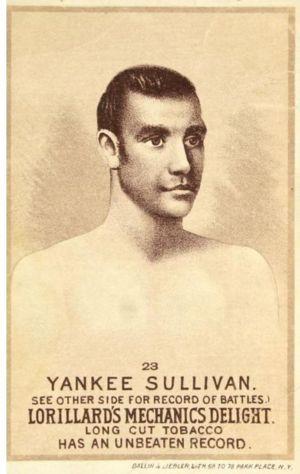 Yankee Sullivan Card