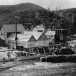 Mount Ophir Mine stamp mill