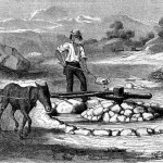 A Mexican miner in 1862